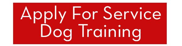 service dog training button